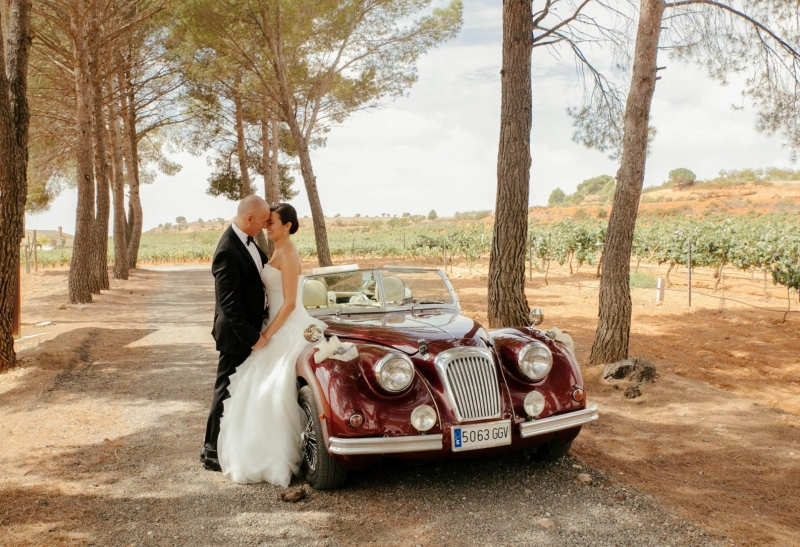 romeo-boda